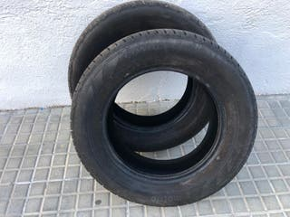 Neumáticos MOTRIO. Conquest.