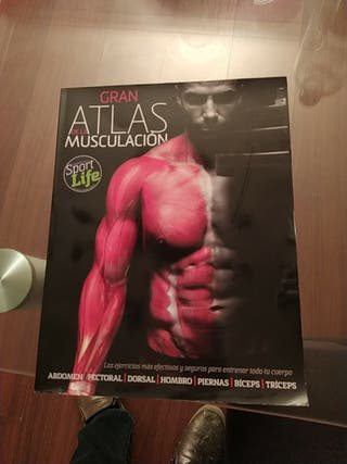 Atlas de Musculación