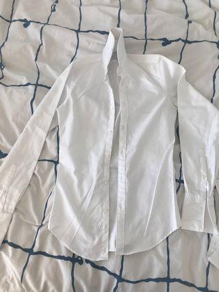 Camisa TM lewin