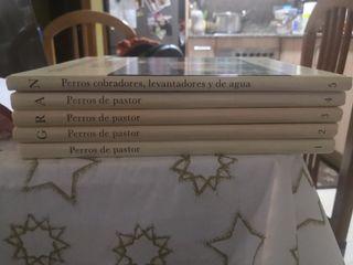 Enciclopedia del Perro
