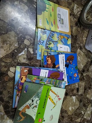 lote libros primero primaria sm