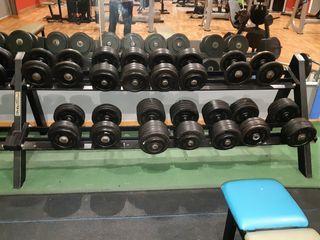 Lote Mancuernas Ortus Fitness