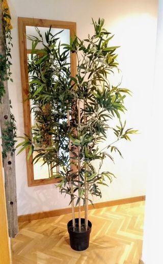 Planta Bambú Ikea