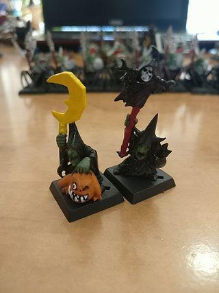 Héroes Goblin paso de la Calavera Warhammer