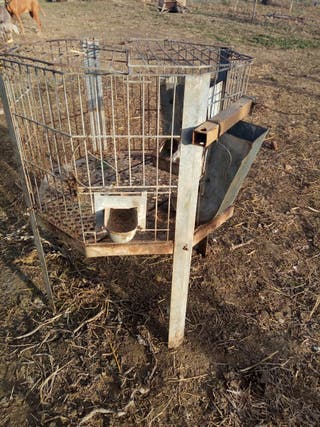 jaula para conejos y gallinas