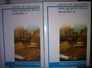 Libro Don Quijote de la Mancha Anaya