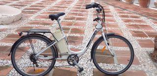 Bicicleta eléctrica Wayscral 300