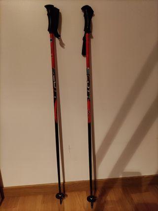 Palos de esqui