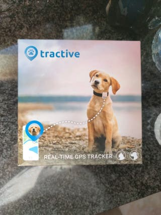 GPS PERROS REAL TIME