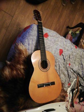 vendo guitarra sonora modelo SGN801