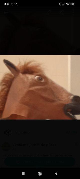 Mascara de caballo