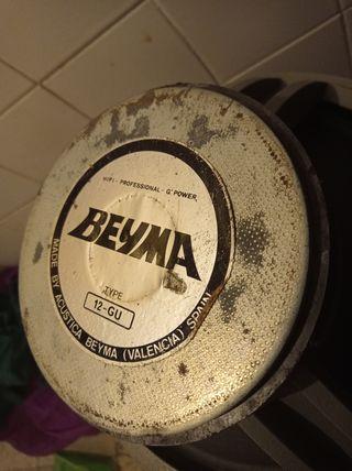 """2 Altavoces para Profesionales, Beyma 12"""" GU"""