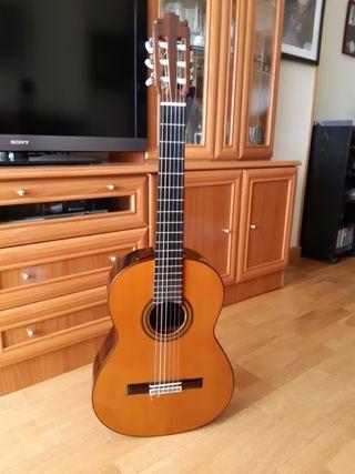 vendo guitarra de concierto