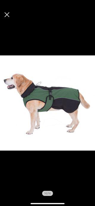 Abrigo para perro