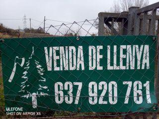 Llenya