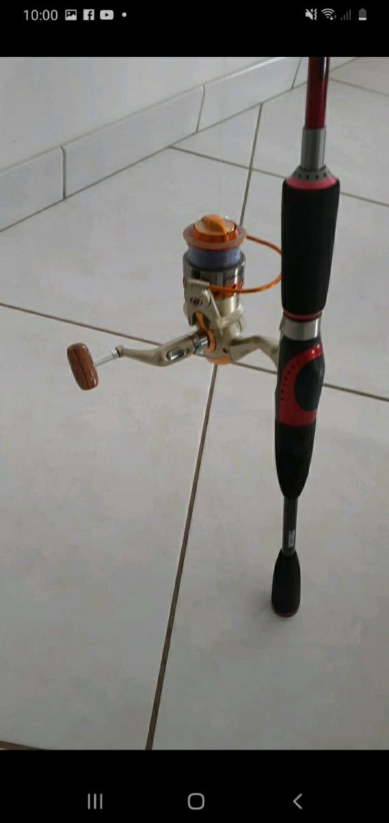 canne à pêche mitchell
