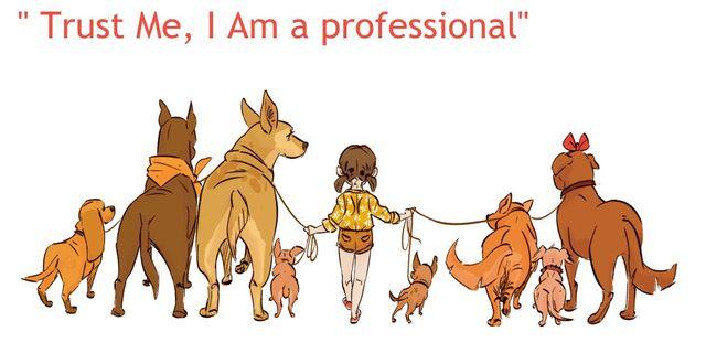 Dogwalker/Pet-Sitter