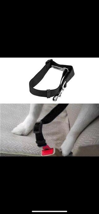 Cinturón coche perros