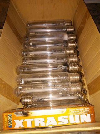 42 bombillas 600w