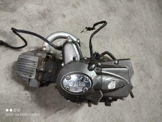 Motor pit bike - quad
