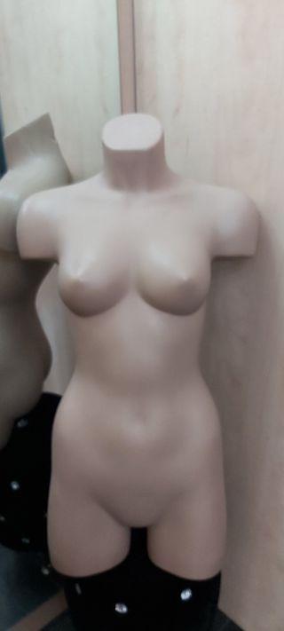 maniqui medio cuerpo nuevo