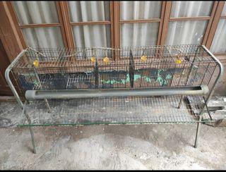 jaula para 5 gallinas