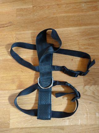 Arnés/cinturón de seguridad perros coche