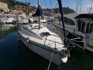 barco velero furia 302
