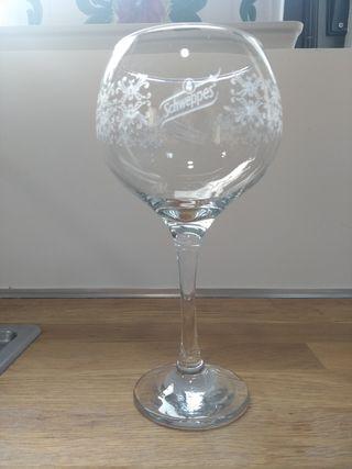 Copa gin tónica Schweppes