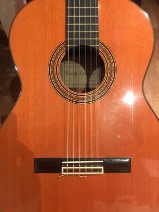 guitarra Vicente Camacho