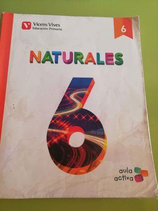 Libro Ciencias Naturale 6°primaria Vincens Vives.