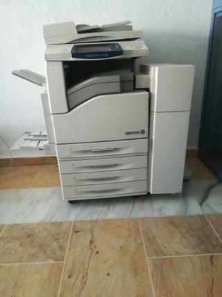 Impresora Copiadora de Red Xerox WC 7428