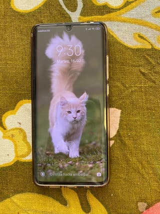 Xiaomi, Mi Note 10