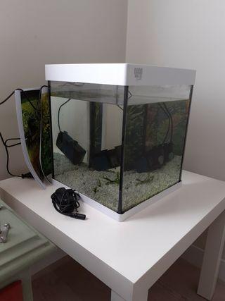acuario 30 litros