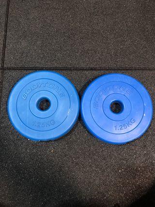 Discos de 1,25kg gimnasio pesas