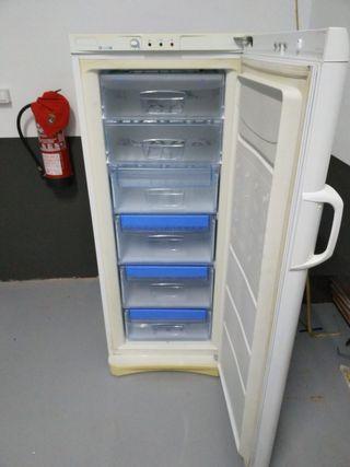 Congelador vertical Indesit
