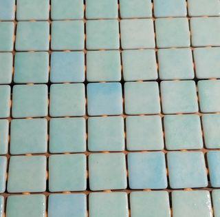 mosaico pared piscina y baño de baldosines y malla