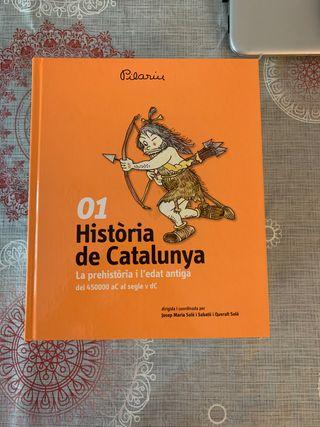 Historia de Catalunya Pilarin