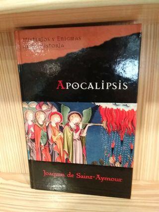 Libro Apocalipsis Joaquin de Saint-Aymour