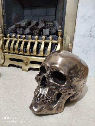 Cranius 22cm Bronzed Skull