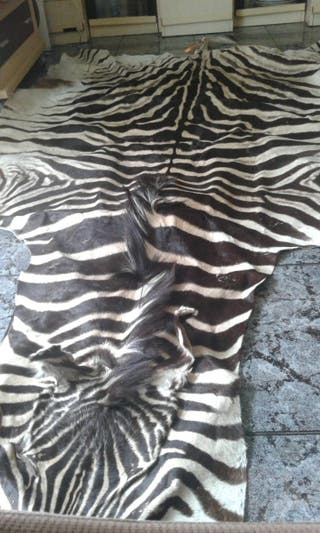 alfombra autentica piel de cebra