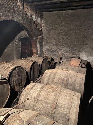 barricas de roble para vinificación