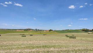 Fardos paquetes alfalfa y esparceta