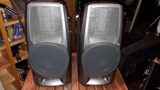 Altavoces SONY SA-EX200