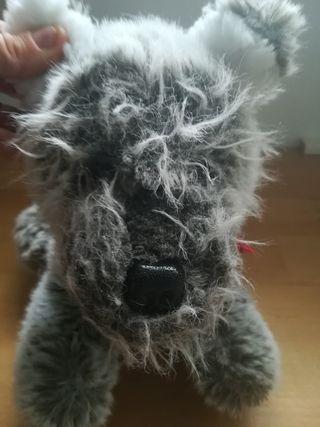 Pechuche gris perrito