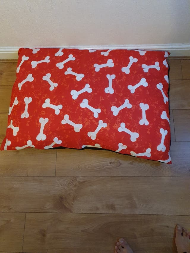 DOG BED'S