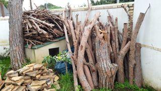 Leña de pino, cortada y limpia.