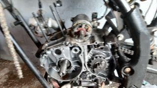 motor pit bike cross 250cc