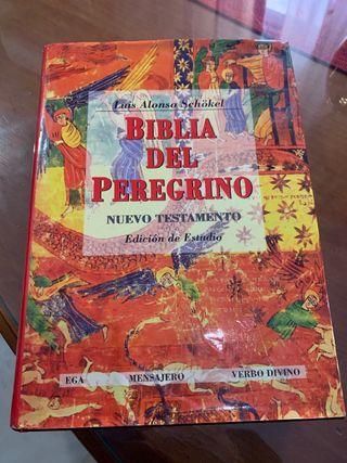 Biblia del Peregrino Edición estudio