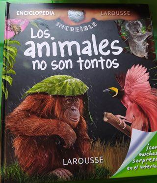 """Libro infantil """"Los animales no son tontos"""""""